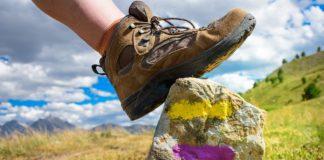Il cosmo-artista una guida alpina per vette isperate